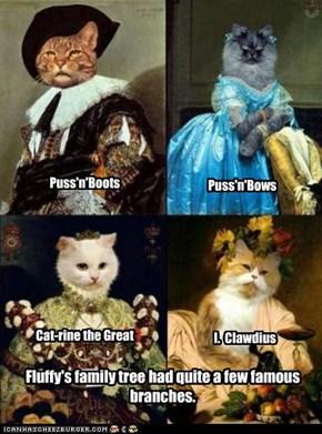 Fluffy Was No Ordinary Cat.
