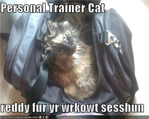 Personal Trainer Cat  reddy fur yr wrkowt sesshun