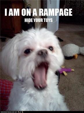 Puppy rampage!