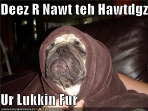 Deez R Nawt teh Hawtdgz  Ur Lukkin Fur