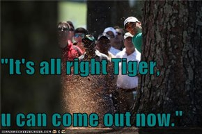 """It's all right Tiger,  u can come out now."""