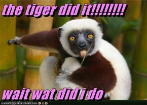 the tiger did it!!!!!!!!  wait wat did i do