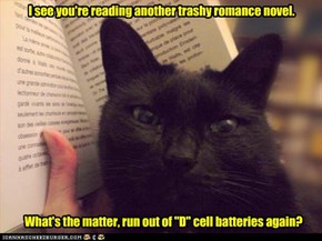 I see you're reading another trashy romance novel.