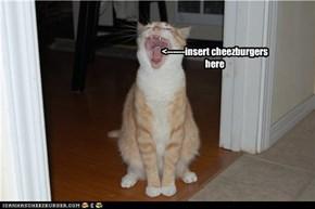 <------insert cheezburgers here