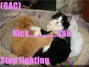 (GAC)        Nick................Zak Stop fighting