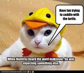 When Humfrey heard the word makeover , he was expecting something else.