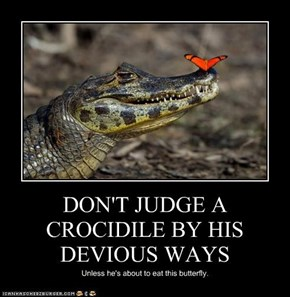 DON'T JUDGE A CROCIDILE BY HIS DEVIOUS WAYS