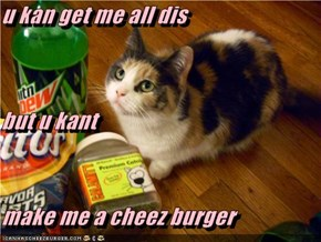 u kan get me all dis but u kant  make me a cheez burger