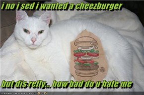 i no i sed i wanted a cheezburger  but dis relly... how bad do u hate me