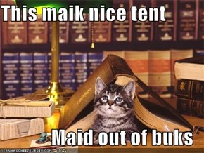 This maik nice tent  Maid out of buks