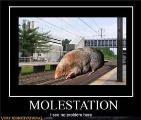 Molestation