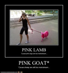 PINK GOAT*