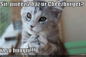 Sir, pweez 2 haz ur Cheezburger?  iz so hungri!!!