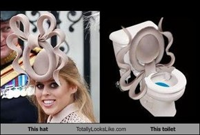 This hat Totally Looks Like This toilet
