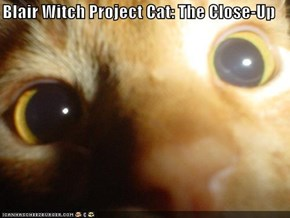 Blair Witch Project Cat: The Close-Up