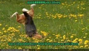 AAAAHHHHH im falling   burt shouldnt have dared me todo a cartwheel