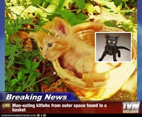 Breaking News - Man-eating kittehs from outer space found in a basket