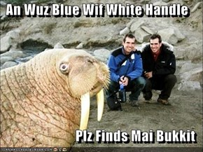 An Wuz Blue Wif White Handle  Plz Finds Mai Bukkit