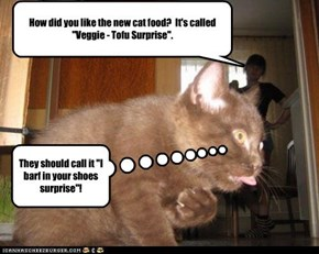 "How did you like the new cat food?  It's called ""Veggie - Tofu Surprise""."