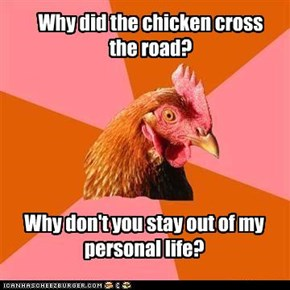Anti-Joke Chicken: Why Did the Chicken Cross the Road?