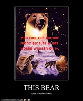 THIS BEAR