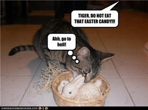 TIGER, DO NOT EAT THAT EASTER CANDY!!!