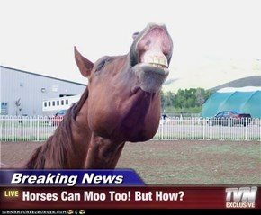 Breaking News - Horses Can Moo Too! But How?