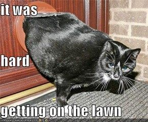 it was hard getting on the lawn