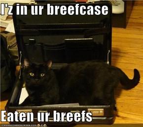 I'z in ur breefcase  Eaten ur breefs