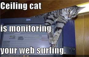 Ceiling cat is monitoring your web surfing.