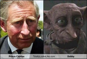 Prince Charles Totally Looks Like Dobby