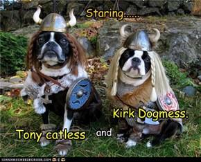 The Vikings  goggie editshun.