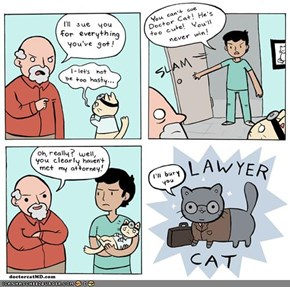 Kitteh Komic of teh Day: Doctor Cat vs. Lawyer Cat
