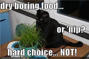 dry boring food... or 'nip? hard choice... NOT!