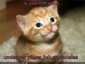 ai just left poos  under yer pillow liek chocolates