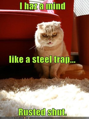 I haz a mind  like a steel trap... Rusted shut.
