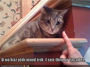 U no haz jedi mind trik. I see thru ur facadez.