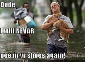 Dude, I will NEVAR pee in yr shoes again!
