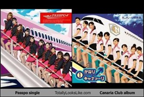 Passpo single Totally Looks Like Canaria Club album