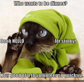 Who wants to be dinner? Oooh HELLO                               Mr.stinky! How good of u to volunteer so quickwy.