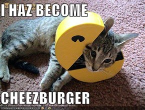 I HAZ BECOME  CHEEZBURGER
