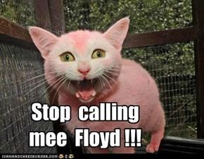 Stop  calling mee  Floyd !!!