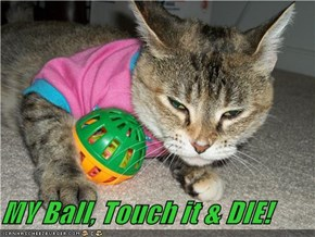 MY Ball, Touch it & DIE!