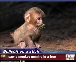 Bullshit on a stick - I saw a monkey noming in a tree