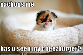 exchoos me  has u seen my cheezburger?