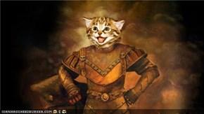 Knight Cat!