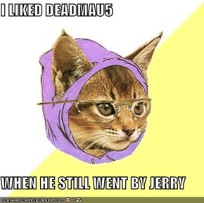 I LIKED DEADMAU5  WHEN HE STILL WENT BY JERRY