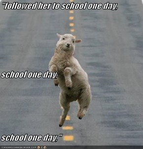 """followed her to school one day,  school one day, school one day,"""