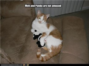 Meh and Panda are not amused