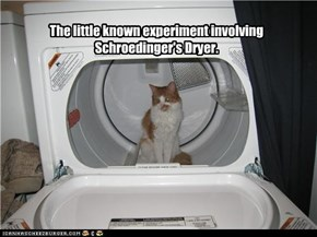 The little known experiment involving Schroedinger's Dryer.